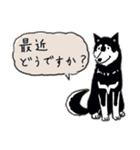 Every Day Dog 黒柴 日本語(個別スタンプ:06)