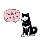 Every Day Dog 黒柴 日本語(個別スタンプ:07)