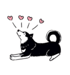 Every Day Dog 黒柴 日本語(個別スタンプ:09)