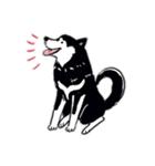 Every Day Dog 黒柴 日本語(個別スタンプ:11)
