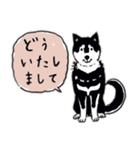 Every Day Dog 黒柴 日本語(個別スタンプ:14)
