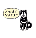 Every Day Dog 黒柴 日本語(個別スタンプ:15)
