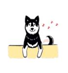 Every Day Dog 黒柴 日本語(個別スタンプ:16)