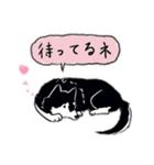 Every Day Dog 黒柴 日本語(個別スタンプ:25)