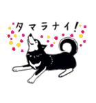 Every Day Dog 黒柴 日本語(個別スタンプ:27)