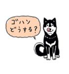 Every Day Dog 黒柴 日本語(個別スタンプ:28)