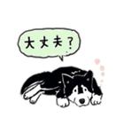 Every Day Dog 黒柴 日本語(個別スタンプ:32)