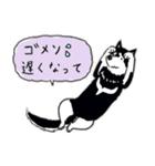Every Day Dog 黒柴 日本語(個別スタンプ:36)