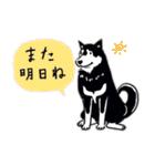 Every Day Dog 黒柴 日本語(個別スタンプ:37)
