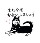 Every Day Dog 黒柴 日本語(個別スタンプ:39)