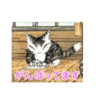 動く!ダヤンのスタンプ(Vol.2)(個別スタンプ:7)