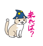 吉田戦車「来れば?ねこ占い屋」(個別スタンプ:3)
