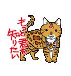 吉田戦車「来れば?ねこ占い屋」(個別スタンプ:15)