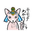 吉田戦車「来れば?ねこ占い屋」(個別スタンプ:24)
