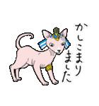 吉田戦車「来れば?ねこ占い屋」(個別スタンプ:25)