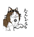 吉田戦車「来れば?ねこ占い屋」(個別スタンプ:38)