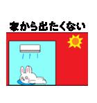 ミニうさとタヌキのたぬぱん 夏編(個別スタンプ:14)