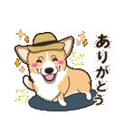 気軽にスタンプ コーギー 夏季編(個別スタンプ:06)