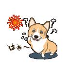 気軽にスタンプ コーギー 夏季編(個別スタンプ:13)
