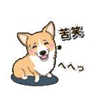 気軽にスタンプ コーギー 夏季編(個別スタンプ:24)