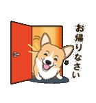 気軽にスタンプ コーギー 夏季編(個別スタンプ:28)