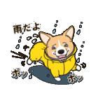 気軽にスタンプ コーギー 夏季編(個別スタンプ:29)
