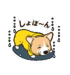 気軽にスタンプ コーギー 夏季編(個別スタンプ:31)
