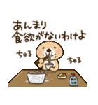 突撃!ラッコさん 夏編(個別スタンプ:23)