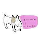 犬から目線 2(個別スタンプ:05)