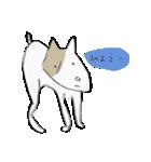 犬から目線 2(個別スタンプ:07)