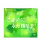 """伝えたい想いにかわいい花を添えて""""応援""""(個別スタンプ:30)"""