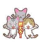いろいろ猫の応援スタンプ(個別スタンプ:10)