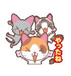 いろいろ猫の応援スタンプ(個別スタンプ:13)