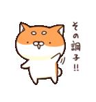 ぷちしば【応援】(個別スタンプ:05)