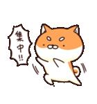 ぷちしば【応援】(個別スタンプ:23)