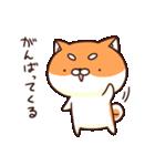 ぷちしば【応援】(個別スタンプ:40)
