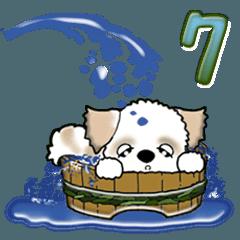 【大きめ文字】シーズー犬の夏 Vol.7