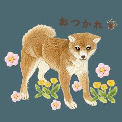 堀内友紀の動物たちの刺しゅう4