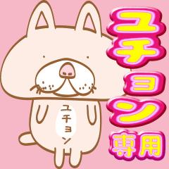 【ユチョン】専用・顔がおっさんネコ