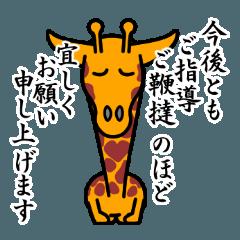 キリン の ノビオ 6 (敬語増量版)