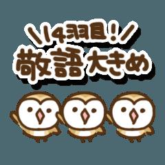 メンフクロウのまめふくちゃん13【敬語】
