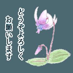 花と丁寧なメッセージ