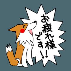 すきすきボーダーコリー12 敬語 (+)