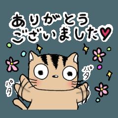 ラク猫(敬語)