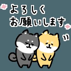 ゆる柴犬スタンプ6・敬語