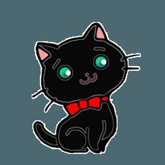 黒猫のあにゃおさん