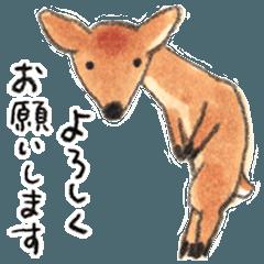 秋草愛のシカスタンプ【敬語】