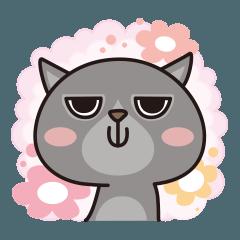 吾輩は猫なのに名前は「ポン太」