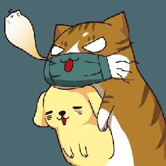 拉致猫 - 特別な表現パッケージを洗う 1