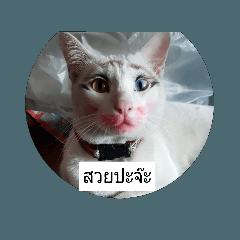 [LINEスタンプ] Mangmi (1)